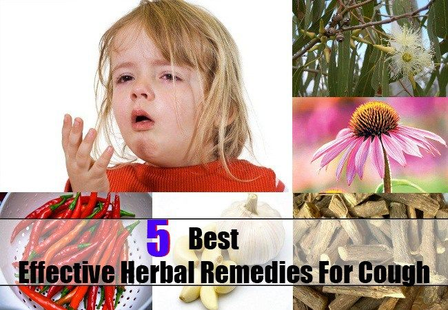 Best 5 Effective Herbal Remedies For Cough