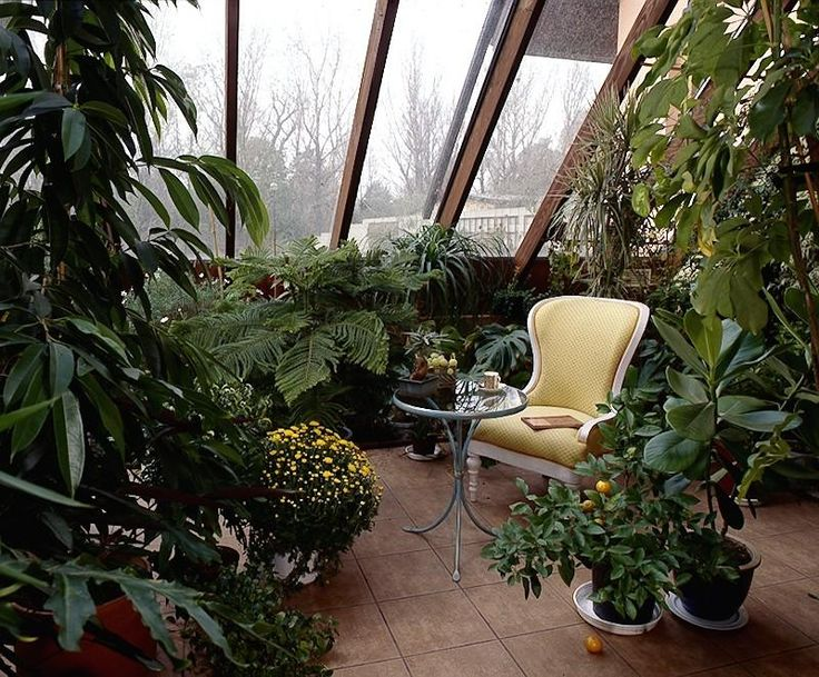 Дизайн зимний сад фото