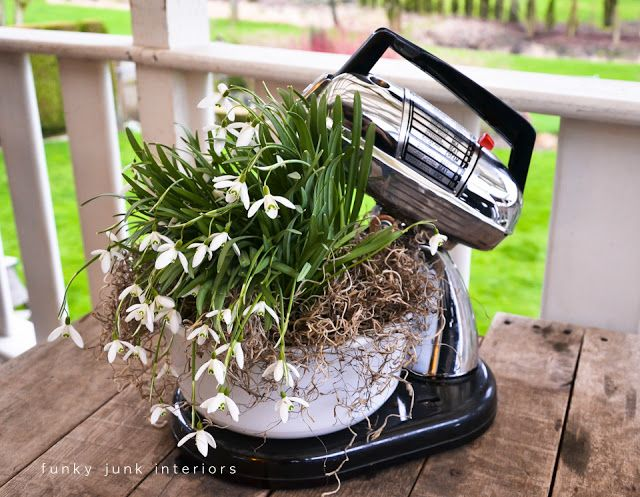 Mixmaster snowdrops - a spring centrepiece - FunkyJunkInteriors.net