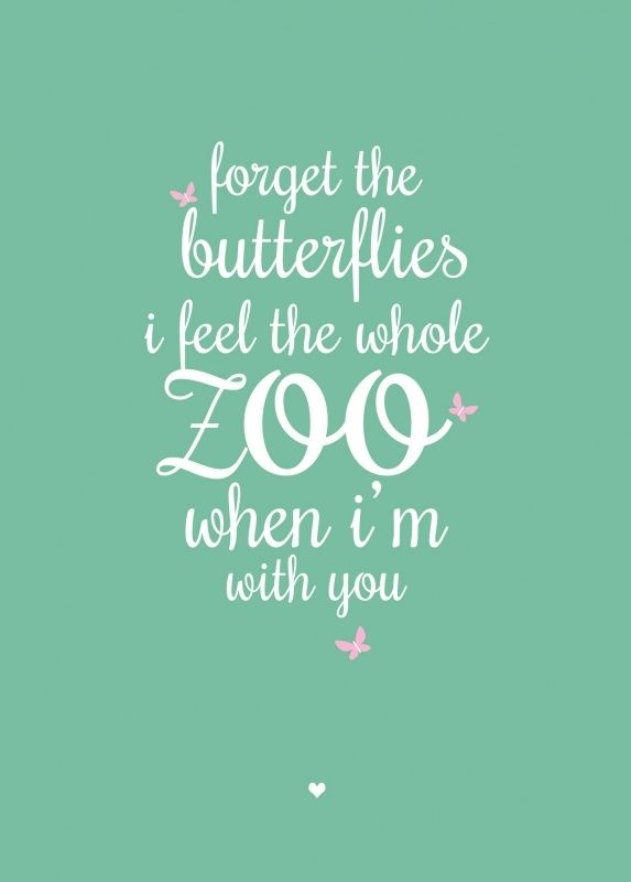 Ansichtkaart Forget the butterflies. Forget the butterflies, i feel the whole zoo when i'm with you.  tekst quote liefde verliefdheid kinderkamer babykamer decoratie mintgroen mint
