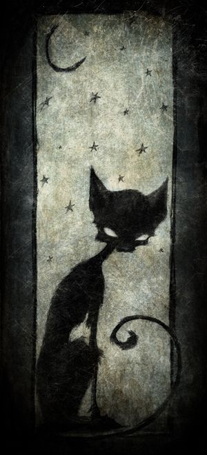 Halloween, All Hallows Eve, Trick or Treat, Witch, Goblin, Ghost, Black Cat, Bat, Skull, Spiders, Ghouls, Scarecrow, Grim Reaper, Grave Keeper, Cobwebs, Jack-O-Lantern, Pumpkin, Spooky, Scary, Haunting, Creepy, Frightening, Full Moon, Autumn, Fall, Magic Potion, Spells, Magic, Haunted - kitty by ma4u4a