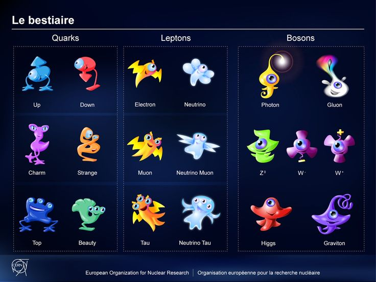 particles_all_w_names.jpg (1600×1200)
