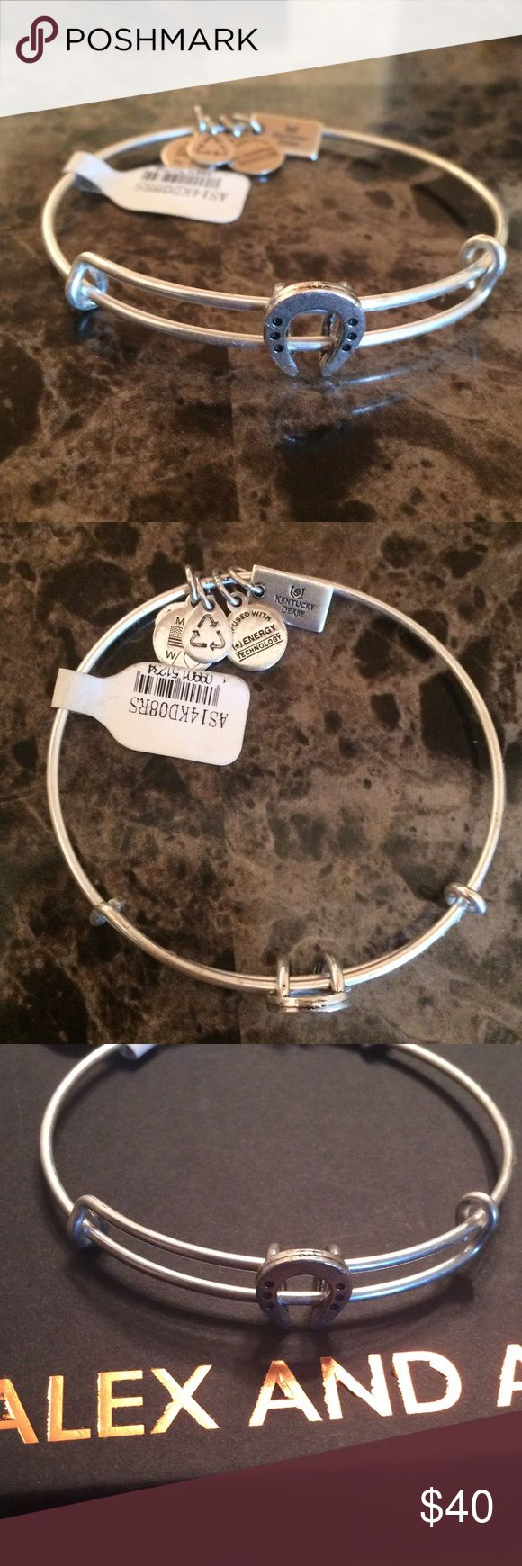 NWT rare Alex and Ani Horseshoe Bangle Silver NWT Retired, rare Alex and Ani. Horseshoe in silver. Charm doesn't dangle, it slides on the bangle. Comes from the Kentucky Derby Collection. Only 1 left. Comes with box and meaning card. Alex & Ani Jewelry Bracelets