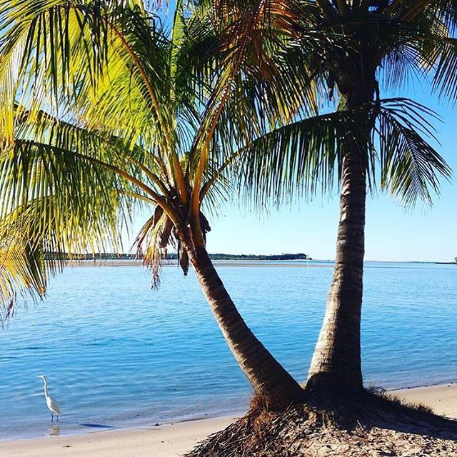 Gazing out from the foreshore to the Noosa River... Yup, we think we could handle an afternoon here! The sparkling waters of the Noosa River are found in Noosaville, a lively centre for holiday accommodation, aquatic activities, bars and restaurants.