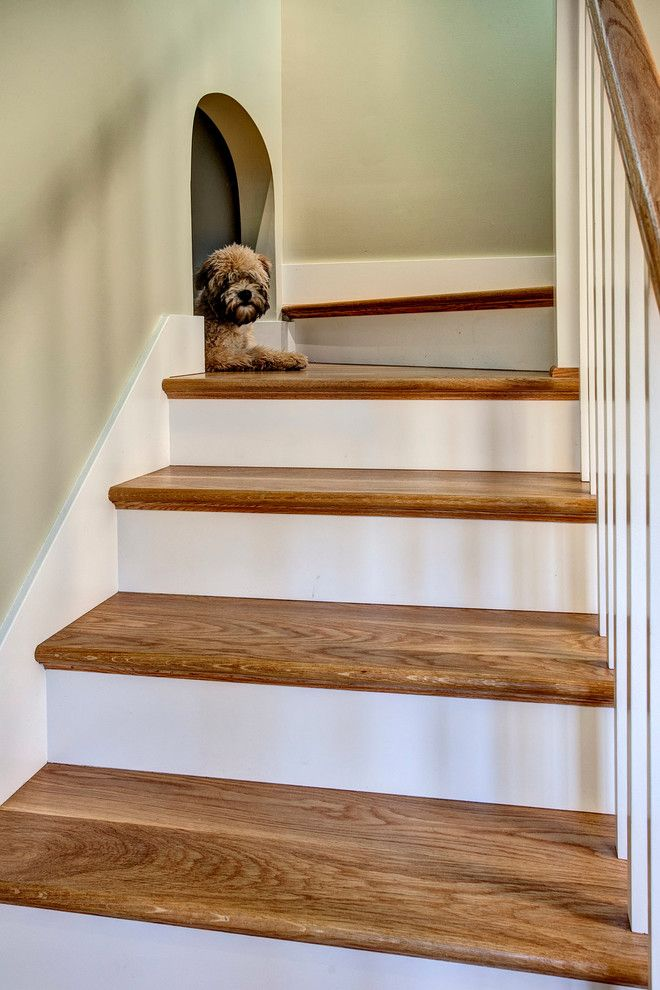 for stairs and landing staircase craftsman with wood tread dog house dog  crate