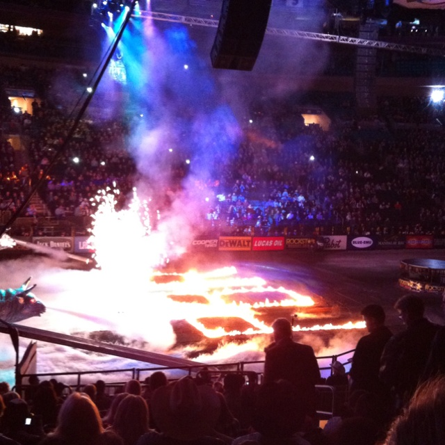 1000 Images About Professional Bull Riding On Pinterest
