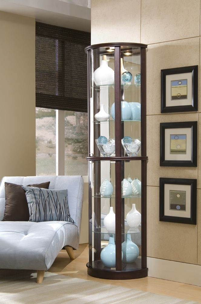 23 best Curio/display images on Pinterest | Curio cabinets, China ...
