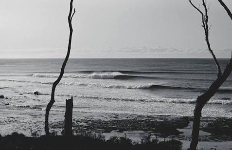 Golfcourse Reef, Ulladulla, South Coast NSW