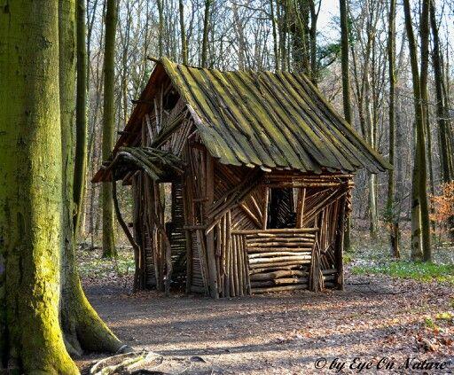 61 best images about forest house on pinterest front deck burlington vermont and wood cabins. Black Bedroom Furniture Sets. Home Design Ideas