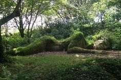 Lost Garden of Heligan, Cornwall England  I want to go there some day!!