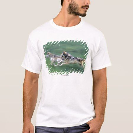 Two wolves in mountain meadow T-Shirt - tap, personalize, buy right now!