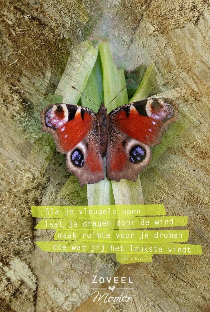 Lees op www.zoveelmooier.nl over hoe je meer jezelf kunt zijn, kunt groeien en ontwikkeling. Hoe je gelukkig kunt worden en positiever in het leven kunt gaan staan.