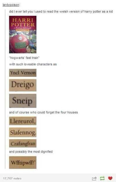 I think I laughed way too much about this! It's not the language (I love Welsh) it's just tumblr