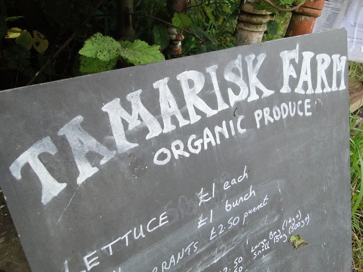 Tamarisk Farm:  Tonya and Ben Hicks' farm has been in their family for generations and for more than nine years they have been running it as an organic farm growing fresh vegetables, fruit and herbs. They sell through a roadside stall as well as providing produce to the Turks Head, cafes and guesthouses on St Agnes.  Tamarisk Farm St Agnes, Isles of Scilly TR22 0PL Tel: 01720 422363
