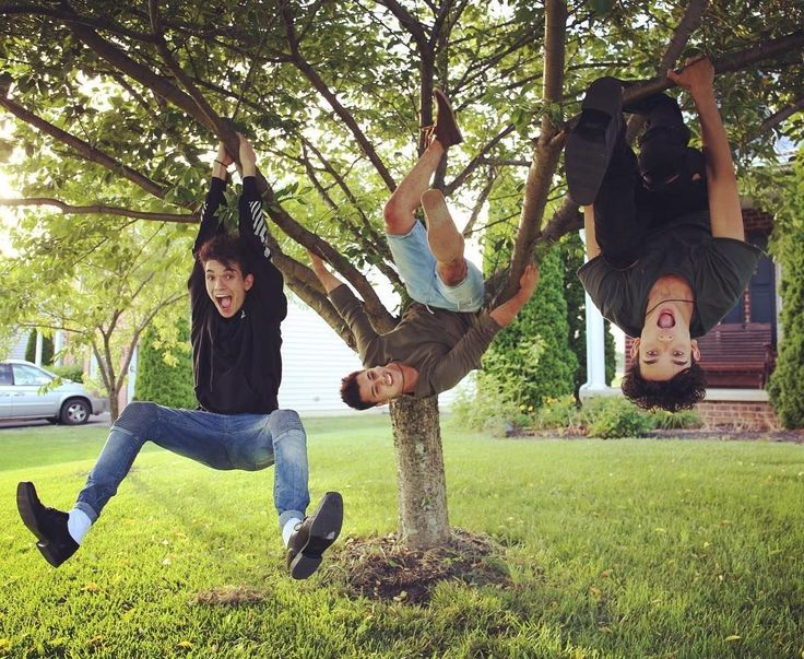 Image result for lucas and marcus hanging in a tree