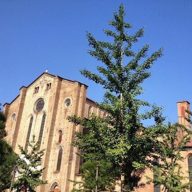 https://flic.kr/p/vARYVc | Senza titolo | #Buongiorno dalla Basilica di San Francesco  by @michelazingone