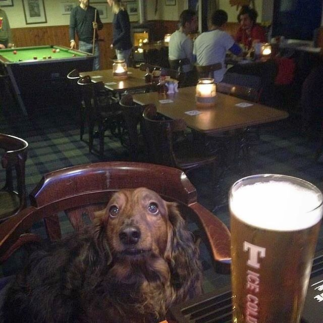 It's Fritz's round at the Taigh Ailean Hotel in Skye - pic @taigh_ailean