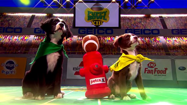 Animal Planet and Pedigree Add VR and Branded Content to This Year's Puppy Bowl | Adweek
