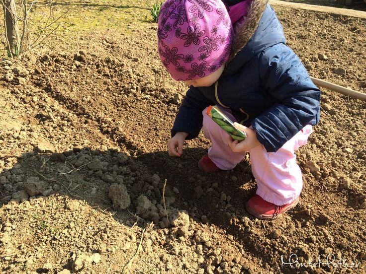 Keď sa hovorí o Montessori aktivitách, väčšinou sa vždy hovorí len o tých domácich. Popri aktivitách na zdokonaľovanie jemnej motoriky sa však zabúda na to, že aj hrubá motorika je rovnako dôležitá. Behanie, skákanie, lezenie, spoznávanie prírody a celkovo pobyt na čerstvom vzduchu. Vďaka tomu, že bývame na dome, môže Adelka vybehnúť von, …