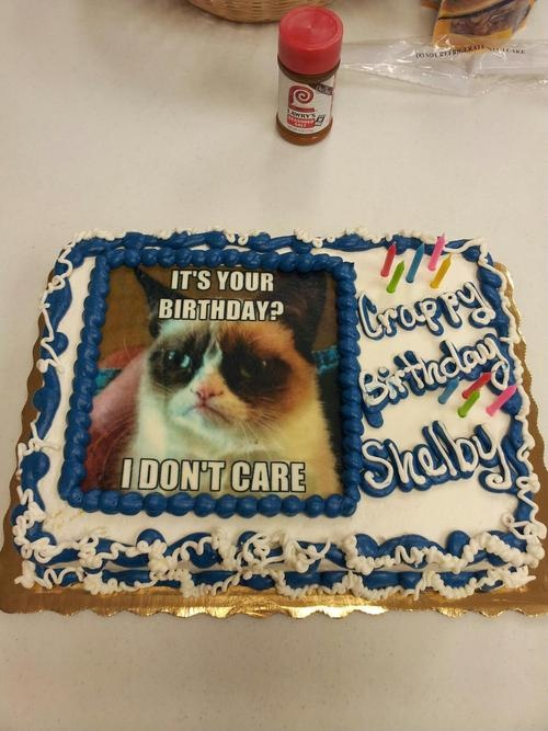 Best 25 Grumpy cat birthday ideas on Pinterest Grumpy cat movie
