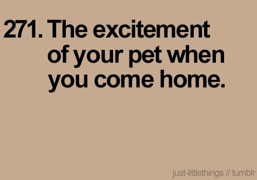So true! I love walking in the door and Cosmo and Winnie