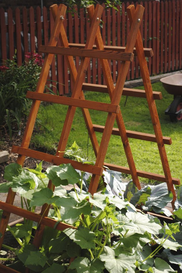 This is a great looking garden trellis and looks sturdy enough for vertical gardening.