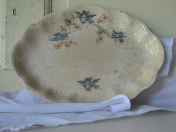 Bluebird platter 1920's Homer Laughlin.: Bluebirds Platters, 1920 S Bluebirds, Laughlin Bluebirds, China Patterns, Bluebirds Dishes, Bluebirds Collection, Eastern Bluebirds, Favorite Patterns, Bluebirds China