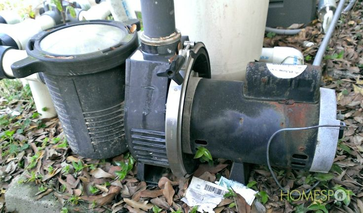 pump maintenance and other pool cleaning tips