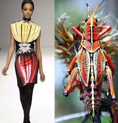 Мода, вдохновленная насекомыми - Ярмарка Мастеров - ручная работа, handmade