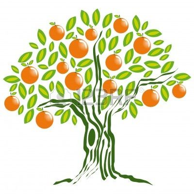 orange tree drawing - Google Search   Frutales, Dibujos de ...
