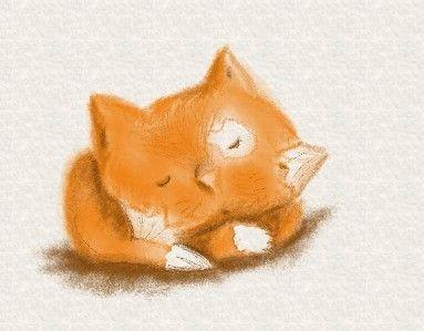 illustration by Elisa Boldrin