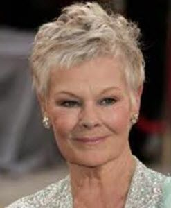 25 Best Ideas About Judi Dench Hairstyle On Pinterest