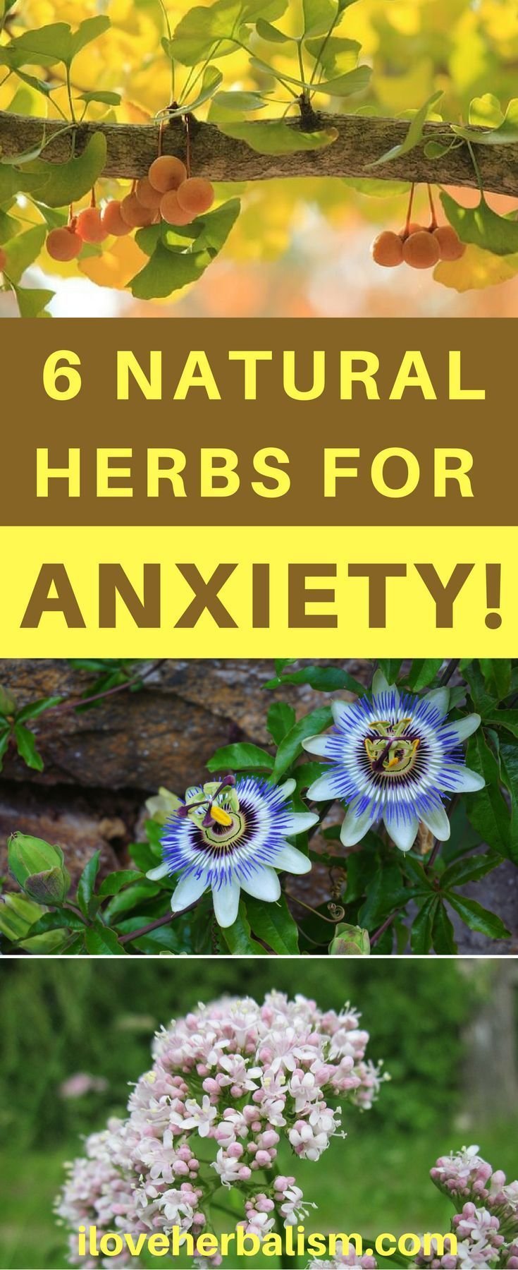 Try These 6 Natural Herbs That Really Help Anxiety! There are lots of risk-free non drug solutions for anxiety, from mind-body strategies to soothing teas. Some begin functioning immediately, while others might aid reduce stress and anxiety gradually with time.