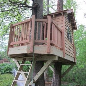 Tree House Plans For Two Trees 3521 best everyone needs a treehouse images on pinterest