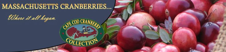 Massachusetts Cranberry:  The New England Cranberry has a healthful amount of iodine content due to the sea's (its salt's) proximity to the bogs.  Iodine supports healthy thyroid function.