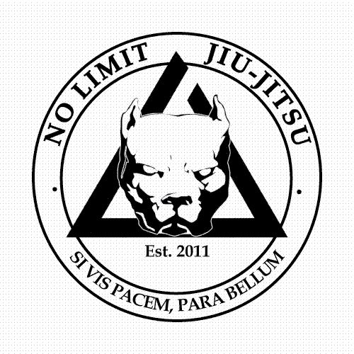 10 best BJJ Logos images on Pinterest   Martial arts, Logo ... No Limit Logo Google Images