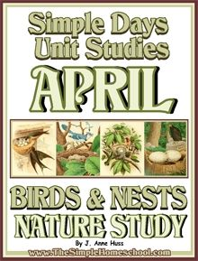 95 pg Nature Study - Birds & Nests #Freebies #Education #Homeschool K-3 #Science #UnitStudies @CurrClick_Leah