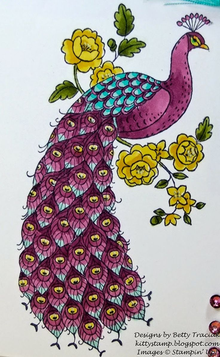 handmade card ... Perfect Peacock in regal purple with turquoise hightlights ... Blendabilities ... Stampin'Up!