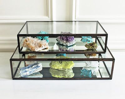 Mineral Collection in glass display box