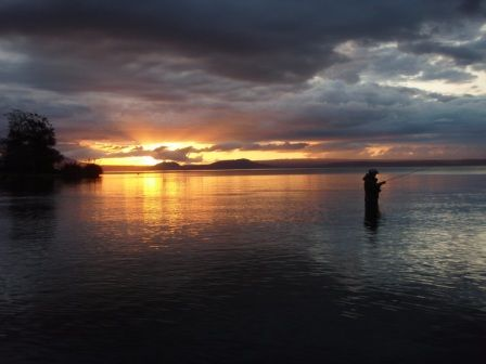 The serenity of Lake #Taupo in the evening.