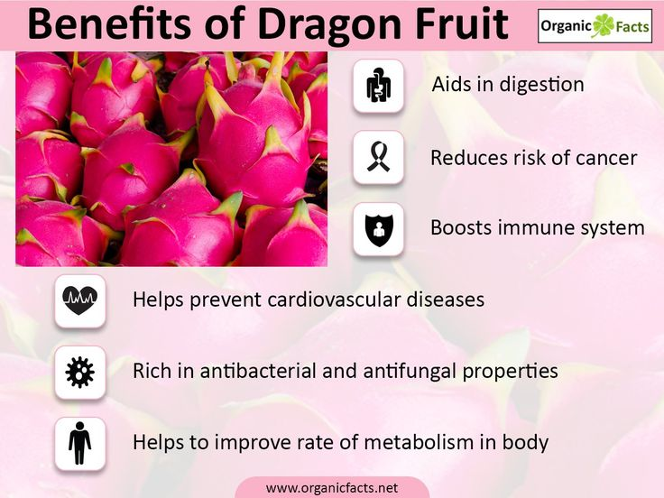 healthy fruits for dogs dragon fruit nutrition