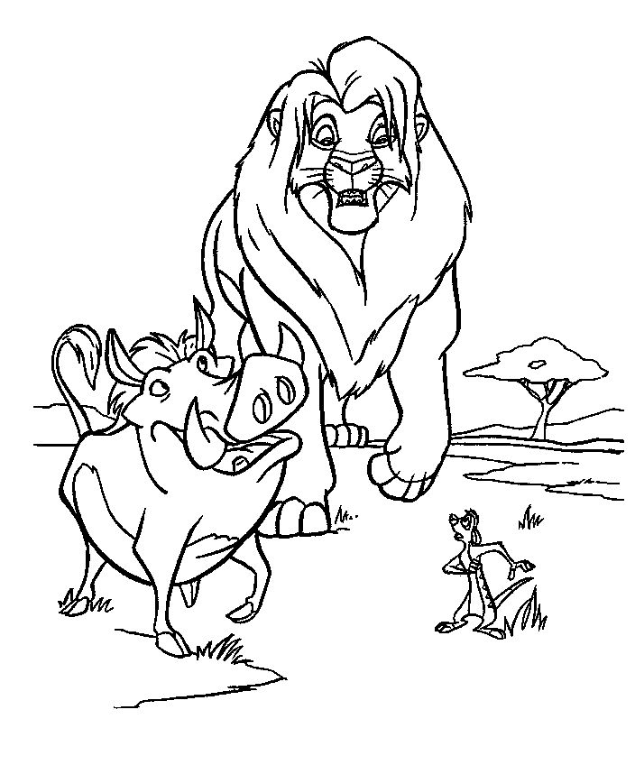 103 best THE LION KING images on Pinterest Disney coloring pages