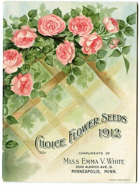 "An abundance of Dorothy Perkins roses climb across the top of a lattice on the front cover of Miss Emma V. White's 1912 catalog. Notably, her address has moved from the back cover to the front cover. Emma V. White called herself the ""North Star Seedswoman"" and had her first mailing in 1896. She produced catalogs with colorful, hand painted covers aimed at woman customers."