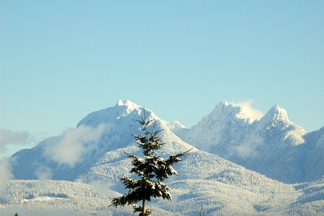 Looking North to Golden Ears from Walnut Grove.