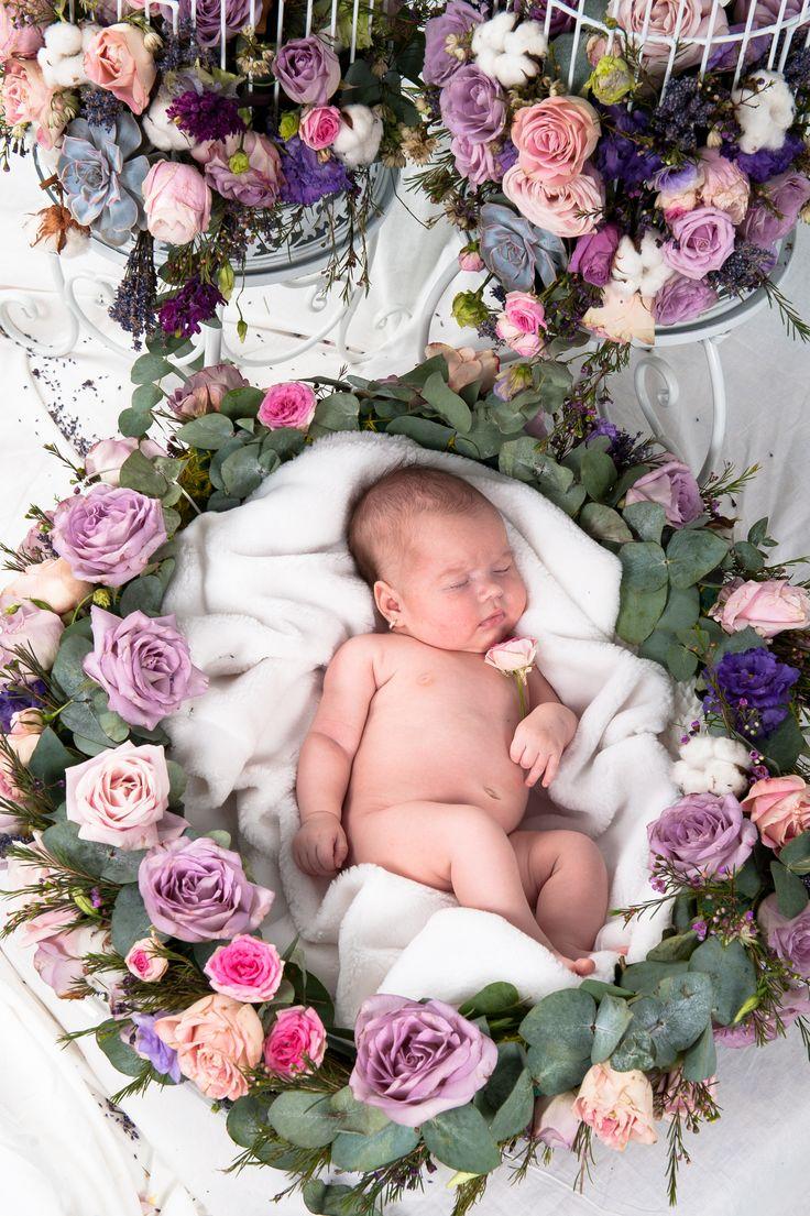 poze nou nascuti,sedinta foto studio copii Timisoara