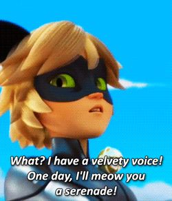 Miraculous Ladybug And if we all remember correctly, he does, and she finishes it for him adding that she's his lady:)