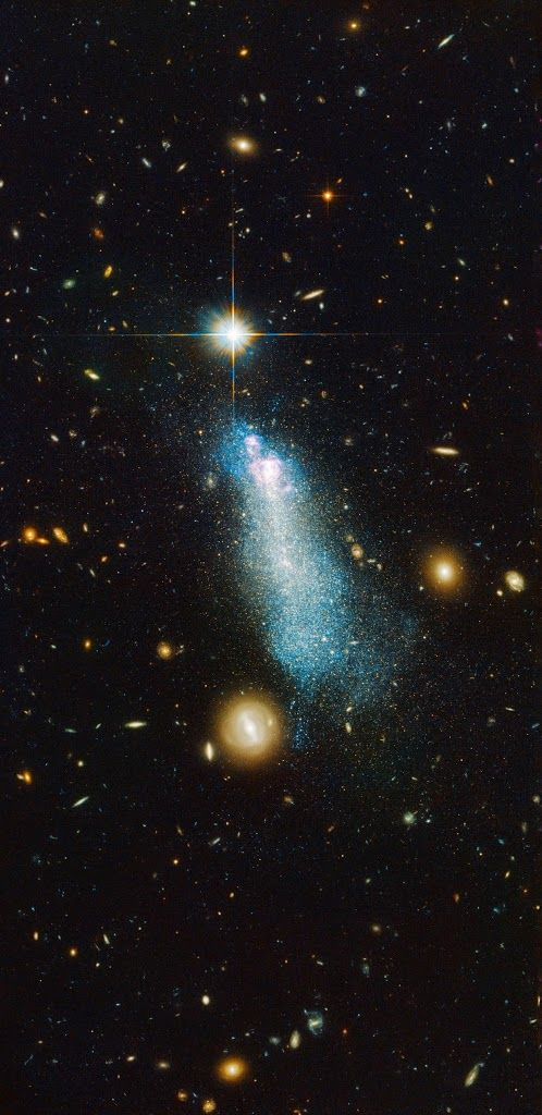 An intriguing young-looking dwarf galaxy Name: PGC 51017 Type: • Local Universe : Galaxy : Size : Dwarf • X - Galaxies Images Distance: 45 million light years Constellation: Bootes Credit: ESA/Hubble & NASA