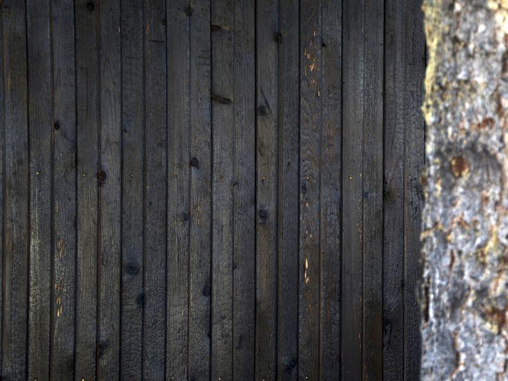 Deep Char Cedar Siding Juxtaposed Next To A Tree Future