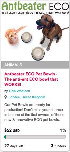 Check out the Antbeater ECO Anti-ant pet bowl that works on the indiegogo.com crowd funding platform.