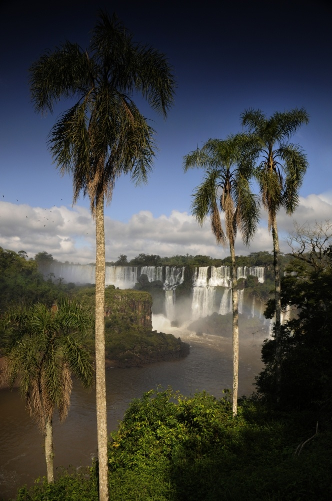 iguazú national park, argentina - menno alberts, photographer